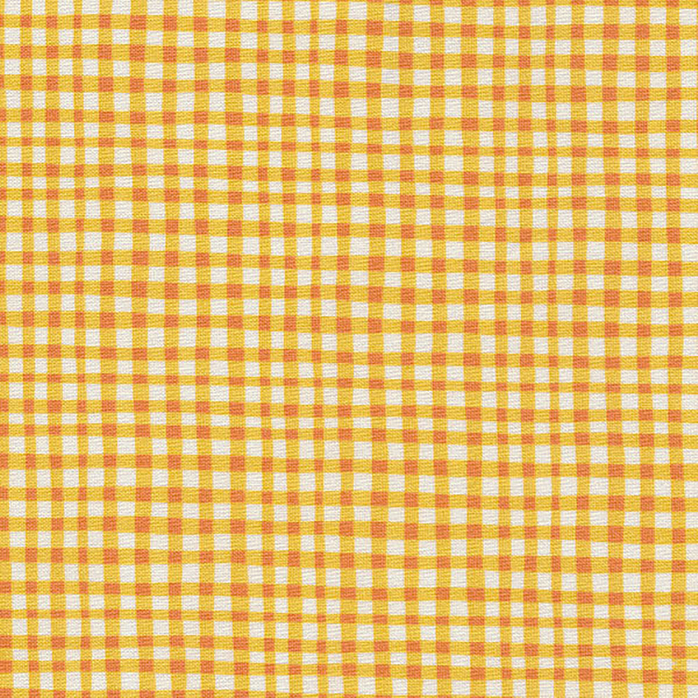 Gingham Play CX7161-MRGD-D by Michael Miller Fabrics