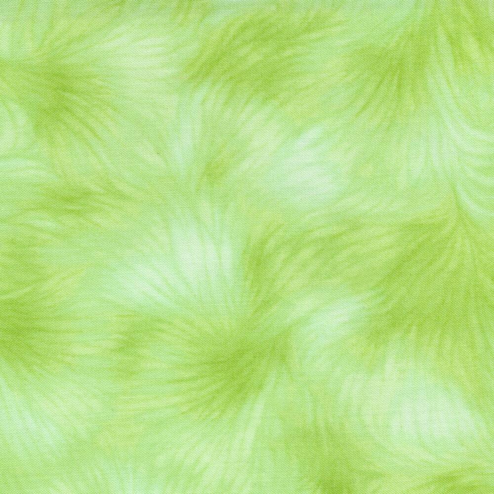 Viola C4459-Celery by Timeless Treasures