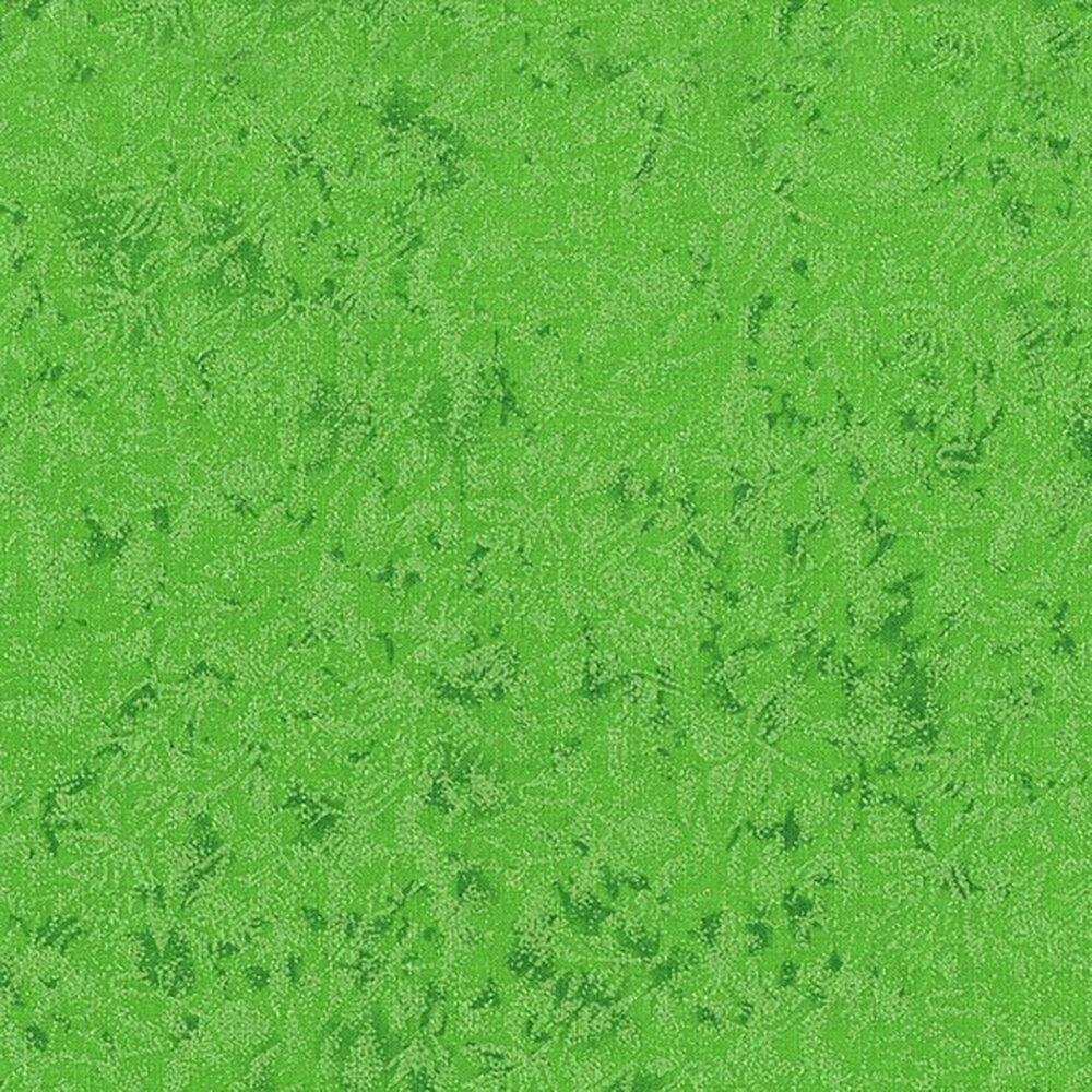 Fairy Frost CM0376-APPL-D by Michael Miller Fabrics