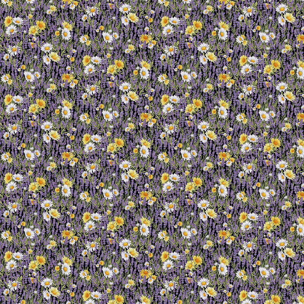Lavender and daisies on a black background