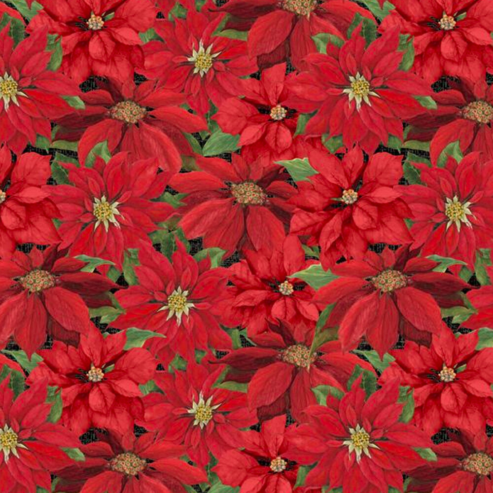 Clustered red poinsettias all over black | Shabby Fabrics