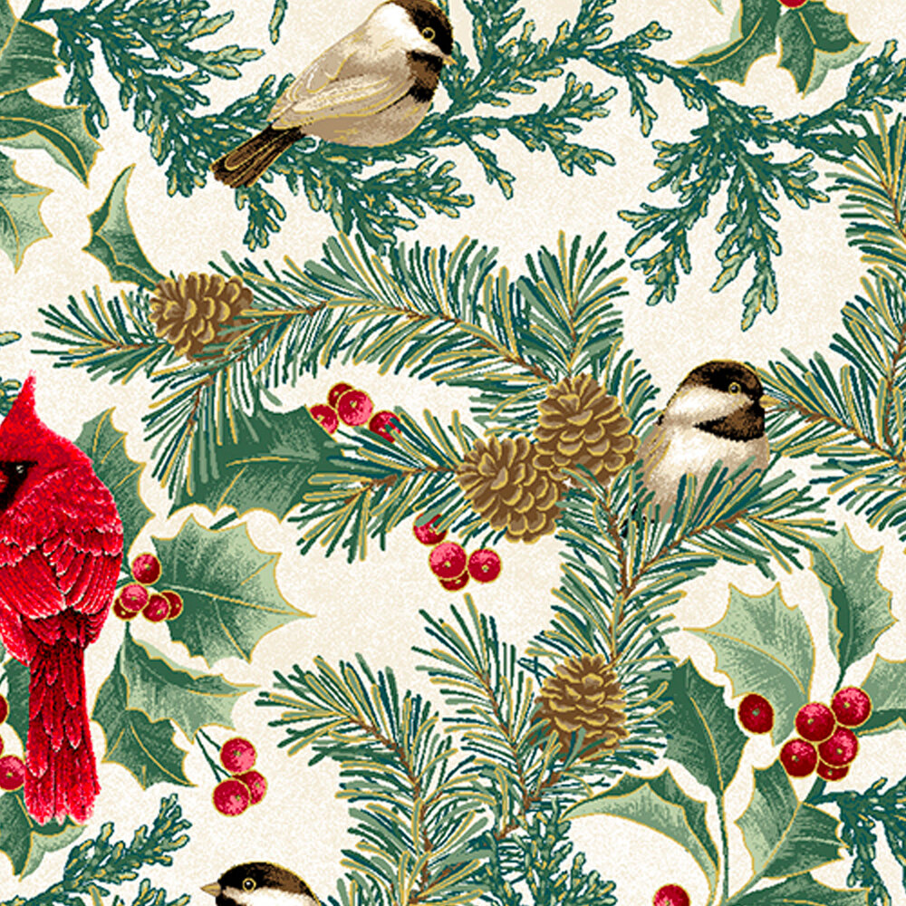 Beautiful red cardinals and small brown birds surrounded by holly and berries with pinecones