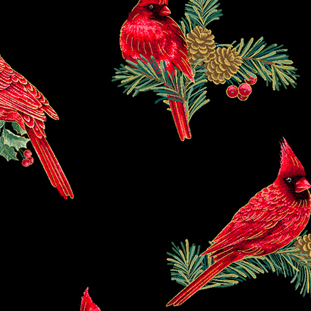 Beautiful red cardinals and green holly on a black background