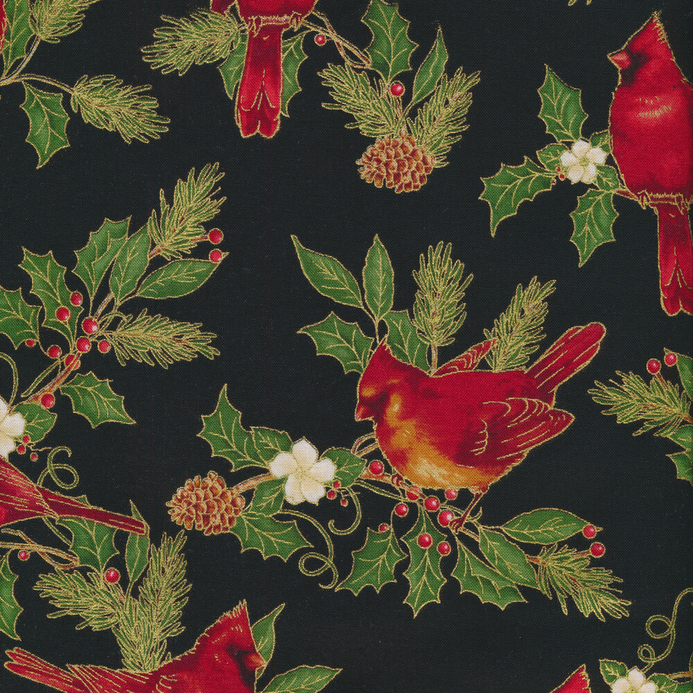 Cardinals and evergreen leaves on a black background