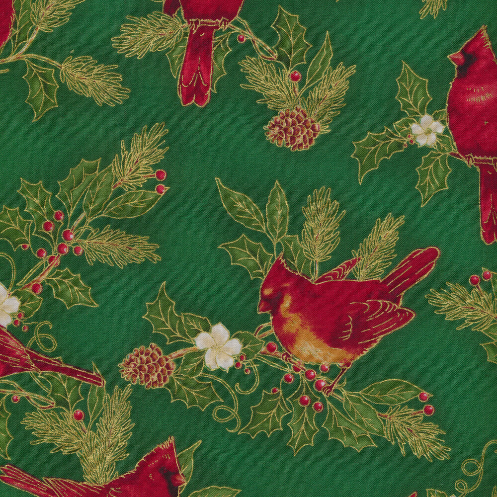 Cardinals and evergreen leaves on a green background
