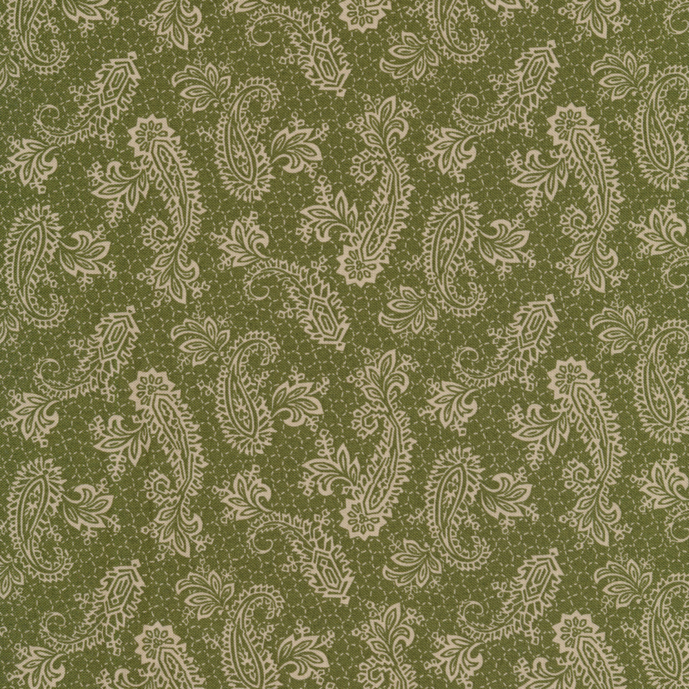 Elegant paisleys surrounded by dotted lines on a green background | Shabby Fabrics