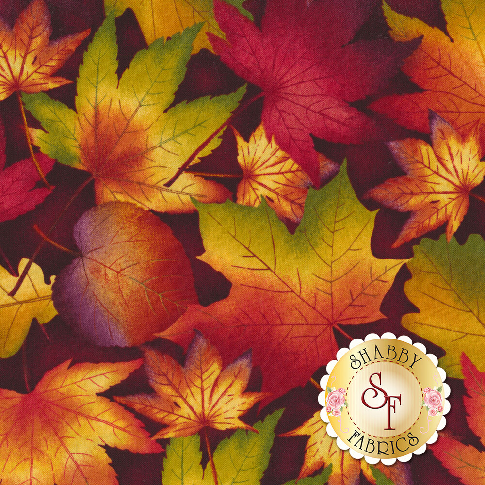 Multi colored maple leaves tossed on a dark red background