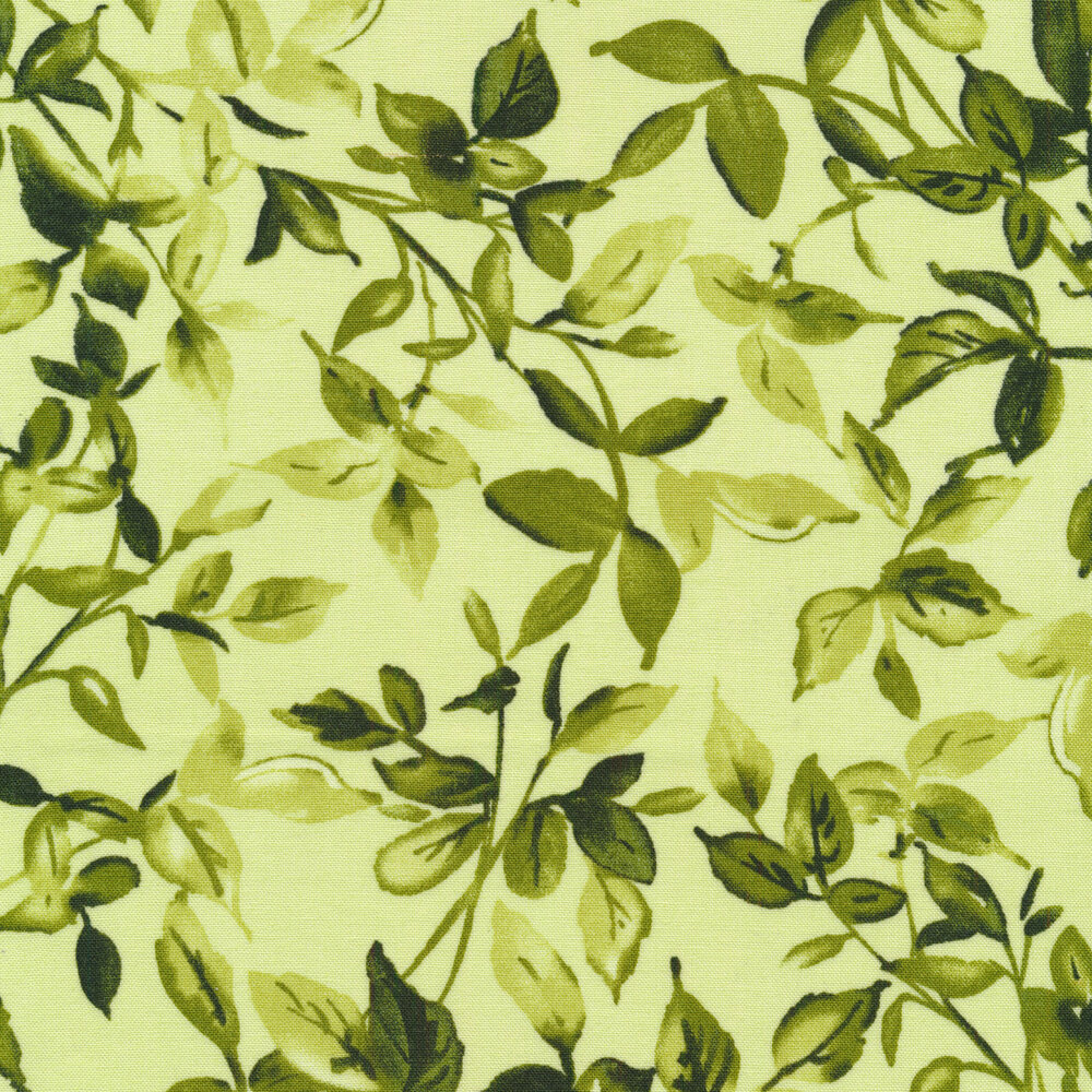 Dark green leaves and vines on a light green background