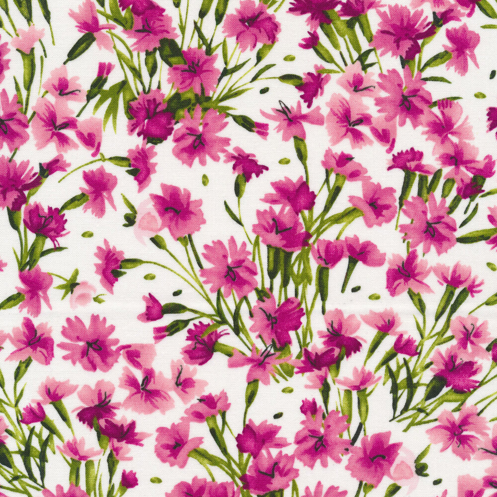 Bright pink flowers with green stems on a white background