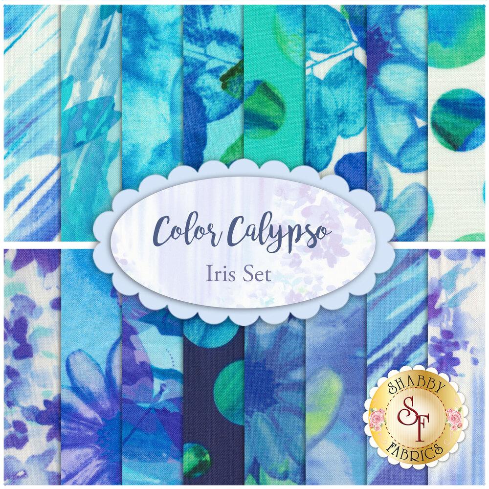 Color Calypso  16 FQ Set - Iris Set by Kanvas Studio for Benartex Fabrics