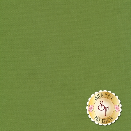 Confetti Cottons C120-HOLLY by Riley Blake Designs