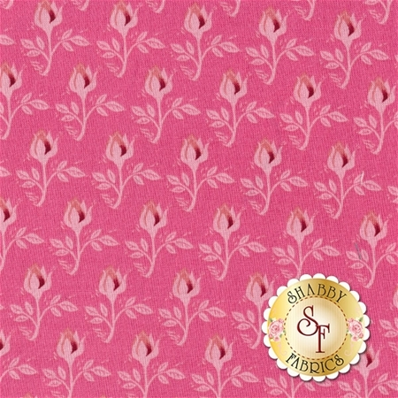 Curiosities C6294-PINK by Riley Blake Designs