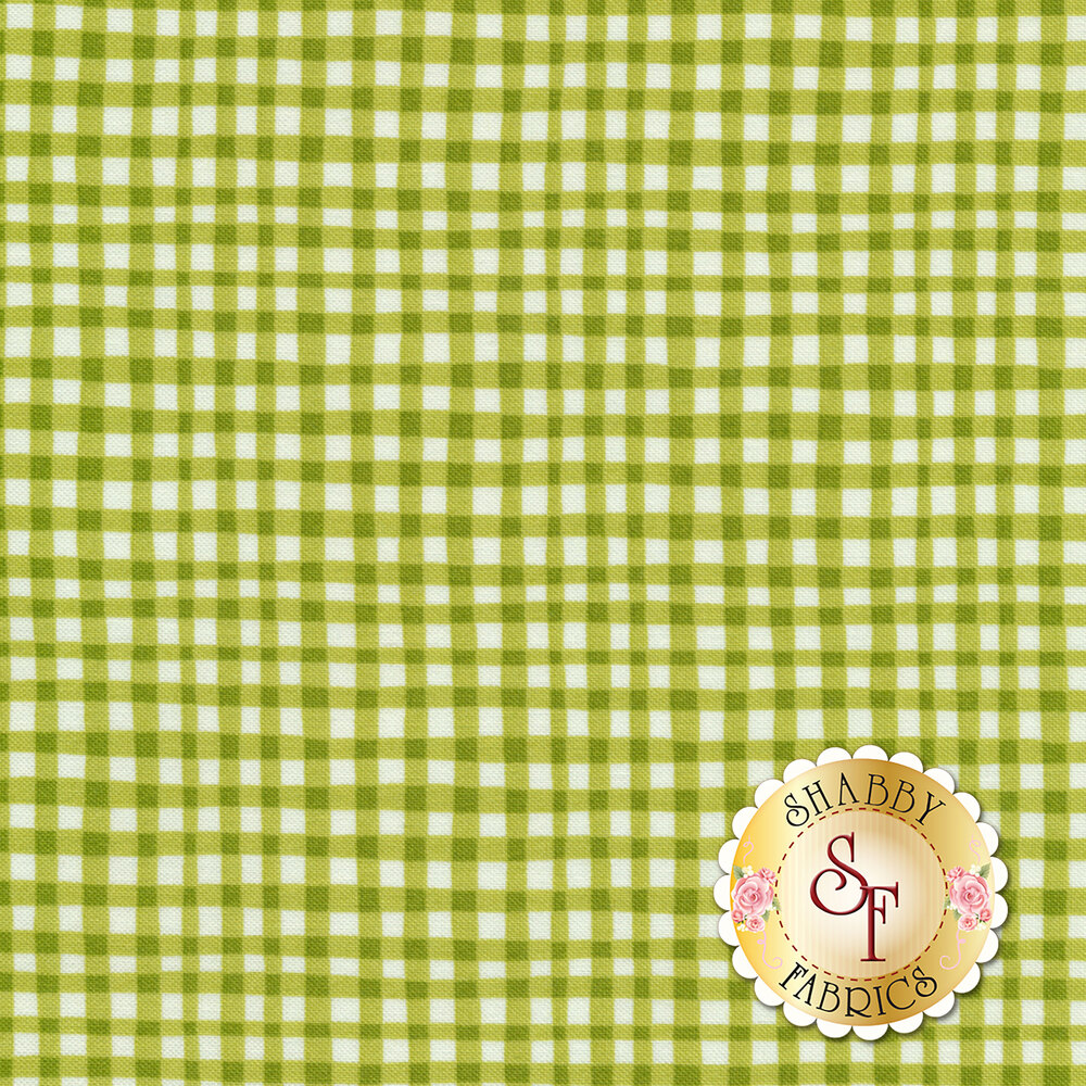 Gingham Play CX7161-ASPA-D by Michael Miller Fabrics
