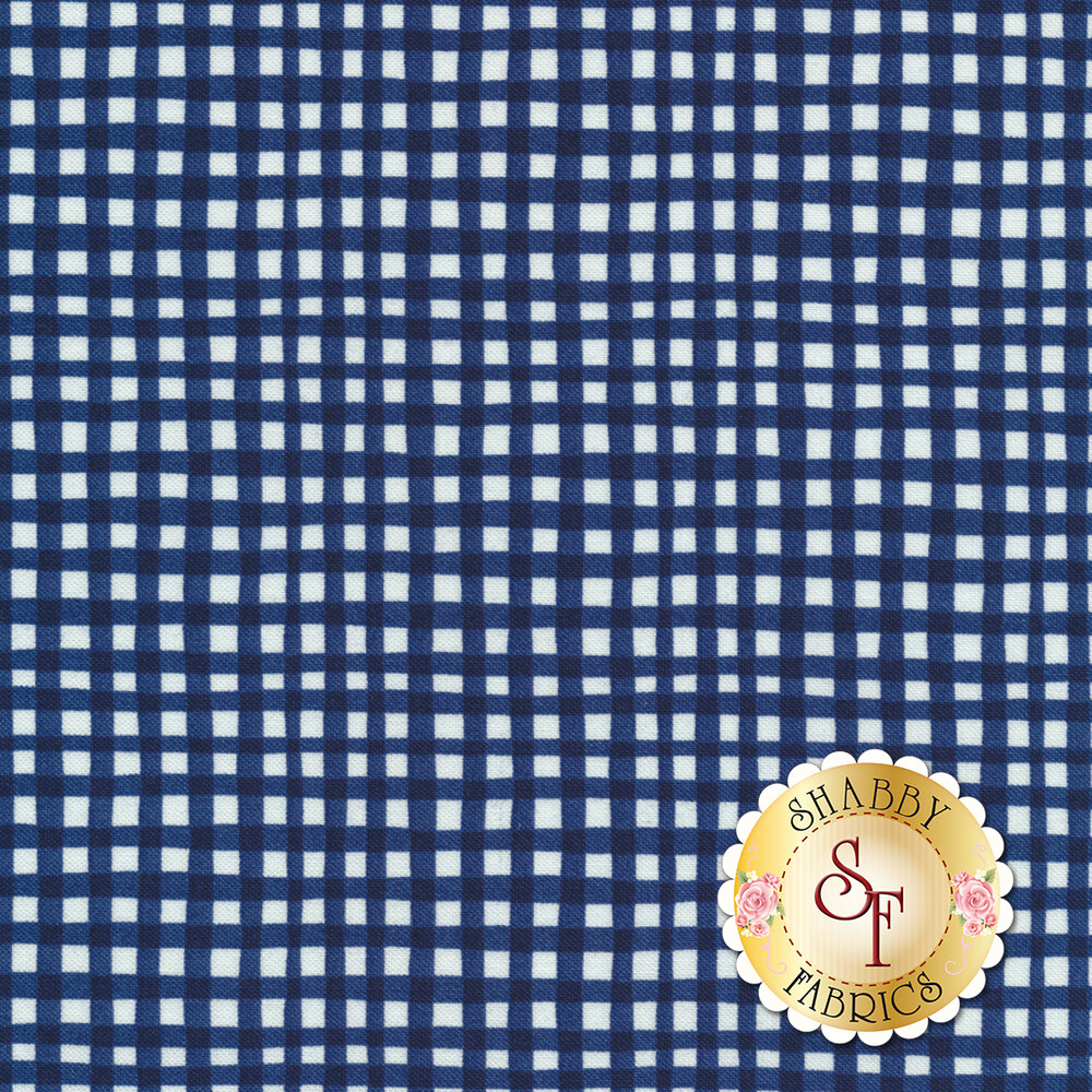 Gingham Play CX7161-CADE-D by Michael Miller Fabrics