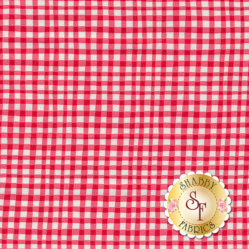 Gingham Play CX7161-CHER-D by Michael Miller Fabrics