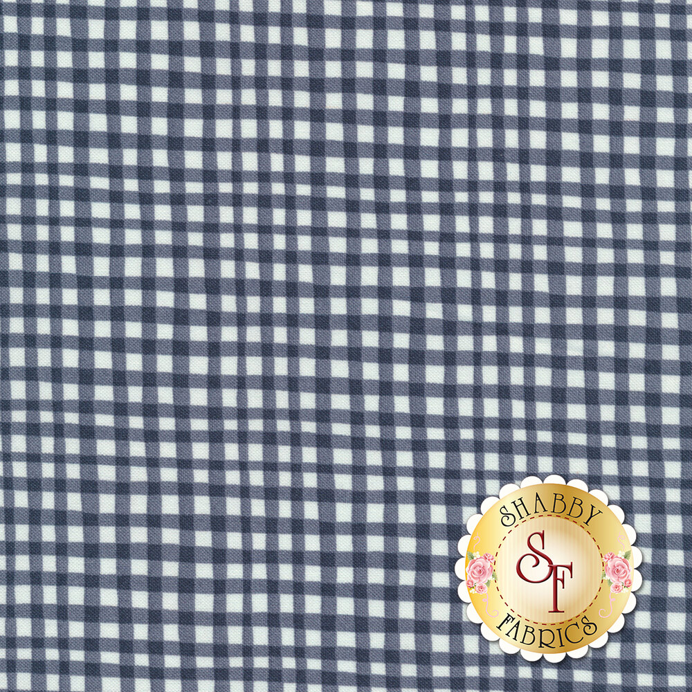 Gingham Play CX7161-GRPH-D by Michael Miller Fabrics