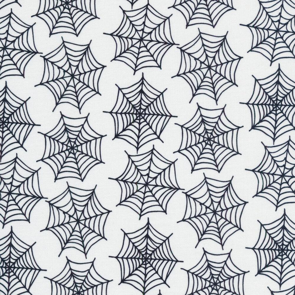 Spiderwebs on a white background