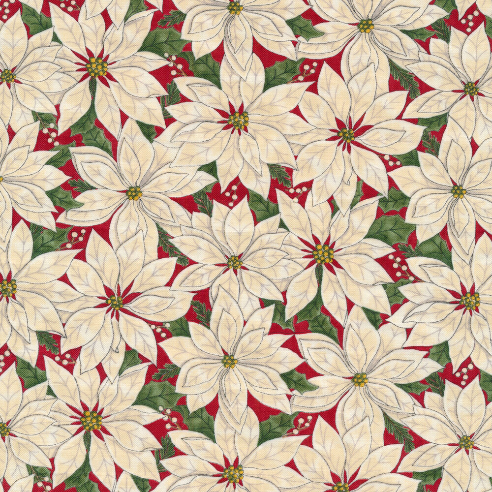 White poinsettias all over a red background