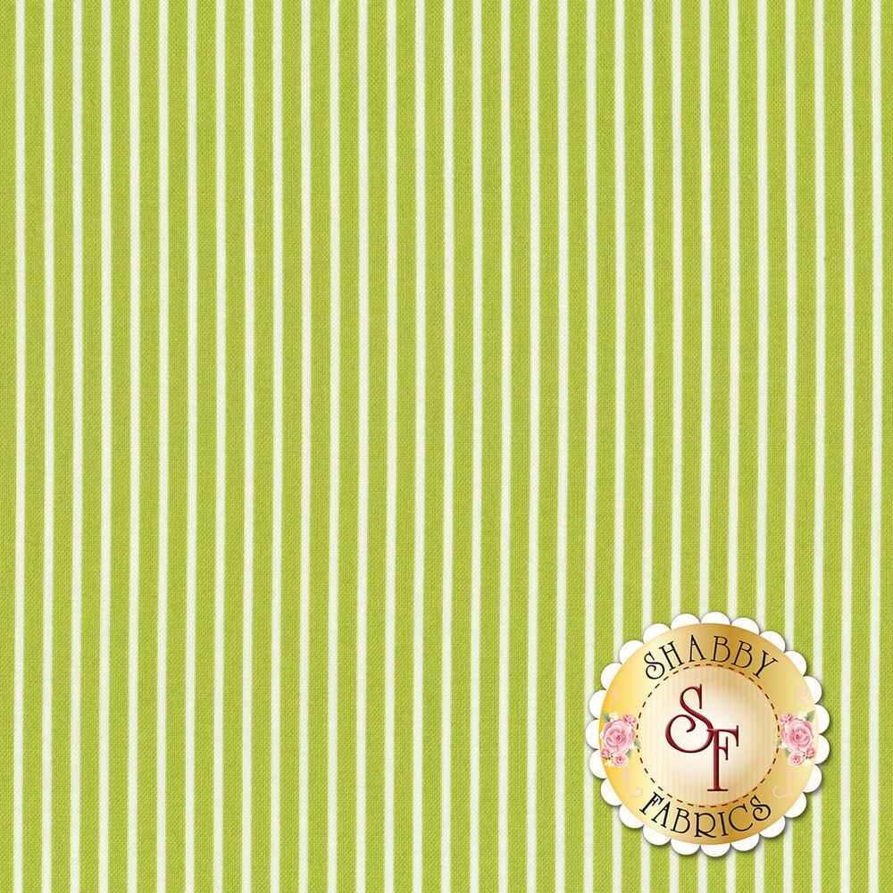 Smitten 55173-16 Pinstripe Green from Moda