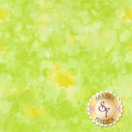 Solid-Ish Basics C6100-Citrus by Timeless Treasures Fabrics