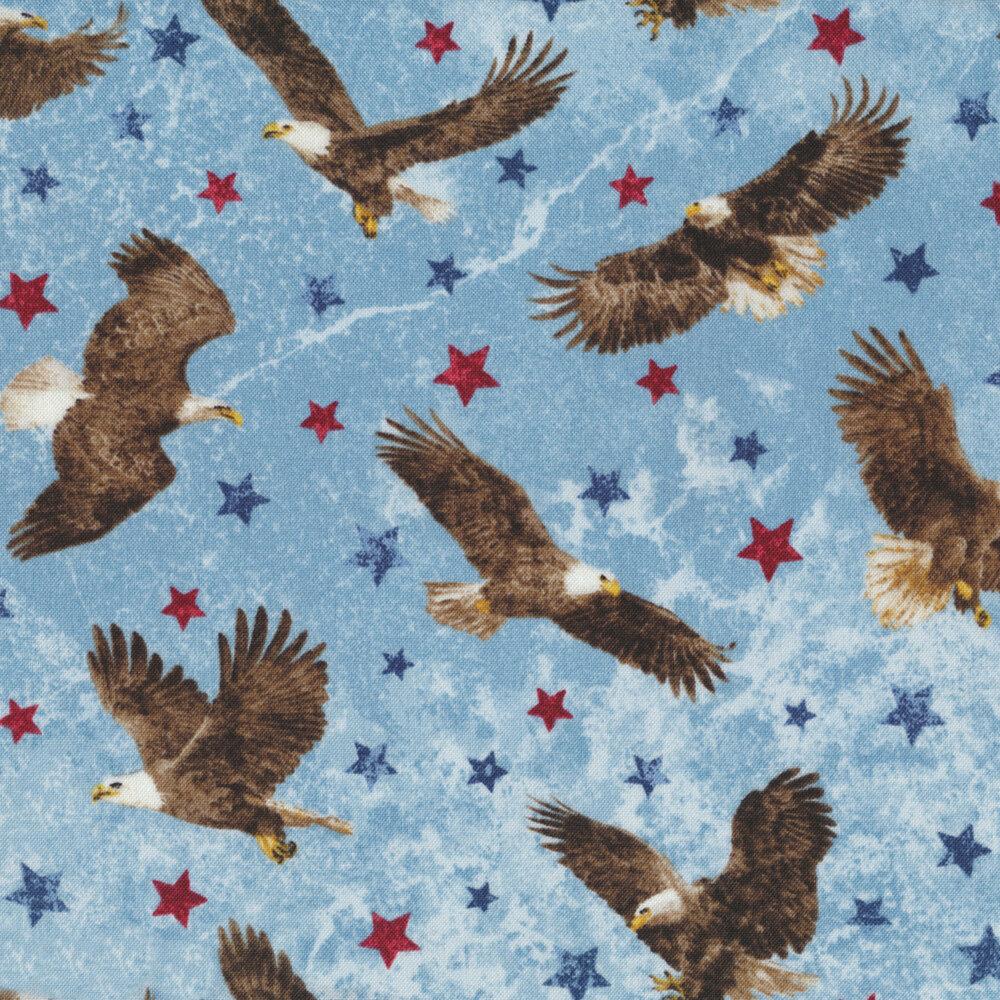 Stonehenge Stars & Stripes 7 39436-42 by Northcott Fabrics at Shabby Fabrics