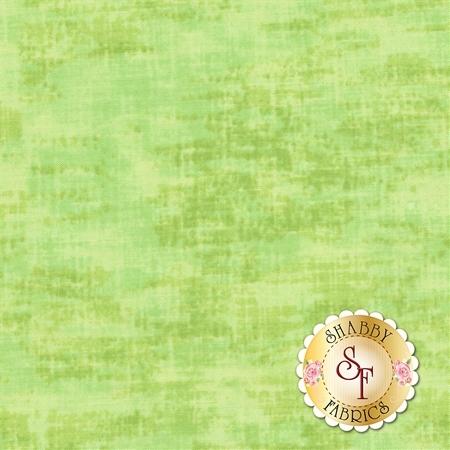 Studio Basics C3096-Pear by Timeless Treasures Fabrics