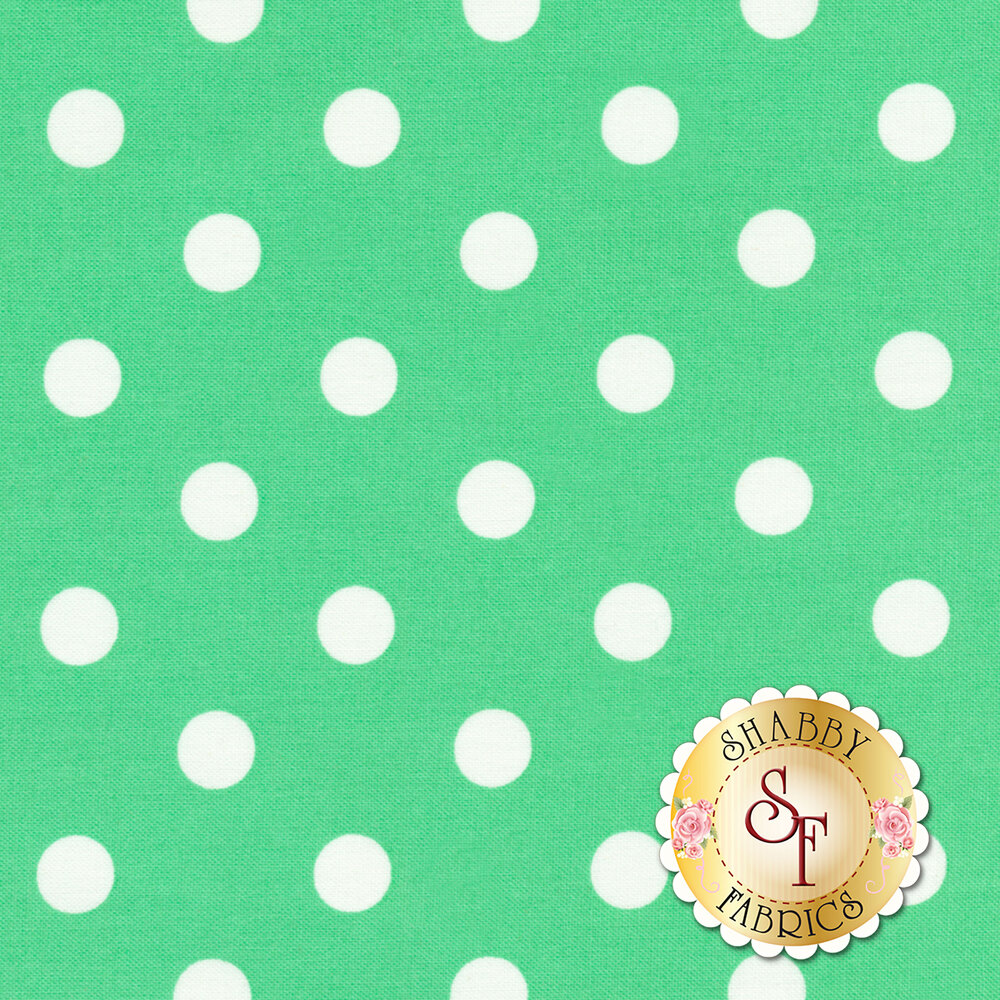 That's It Dot CX2489-FRES by Michael Miller available at Shabby Fabrics