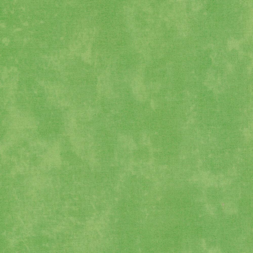 Toscana 9020-720 Granny Smith by Deborah Edwards for Northcott Fabrics