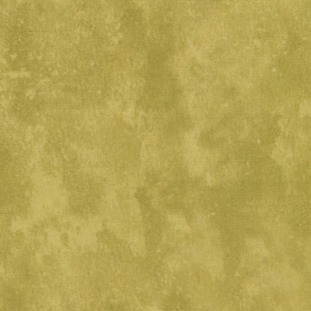Toscana 9020-740 Khaki by Deborah Edwards for Northcott Fabrics