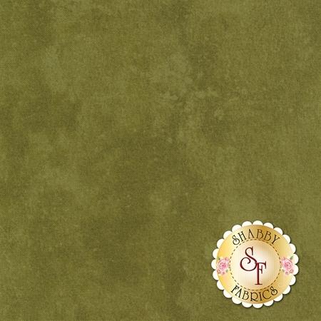 Toscana 9020-79 by Northcott Fabrics