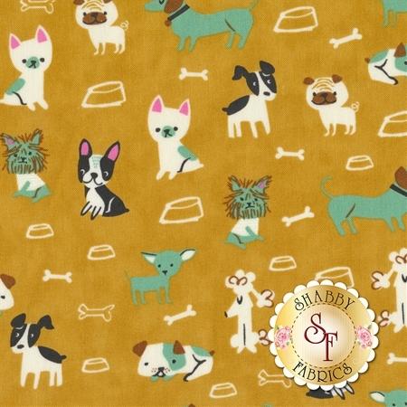 Woof Woof Meow 20562-13 by Moda Fabrics