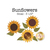Small sunflower applique shapes measure 3 ½ inches in diameter.